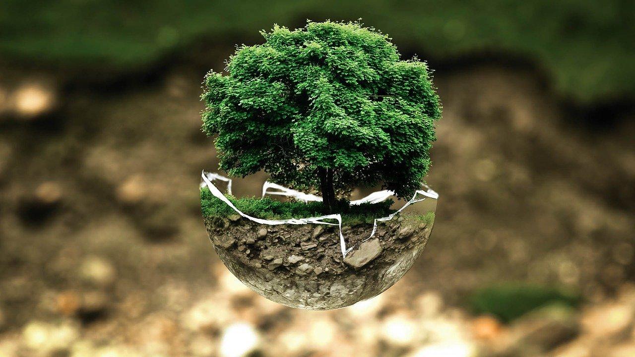 L'écologie au cœur du self stockage